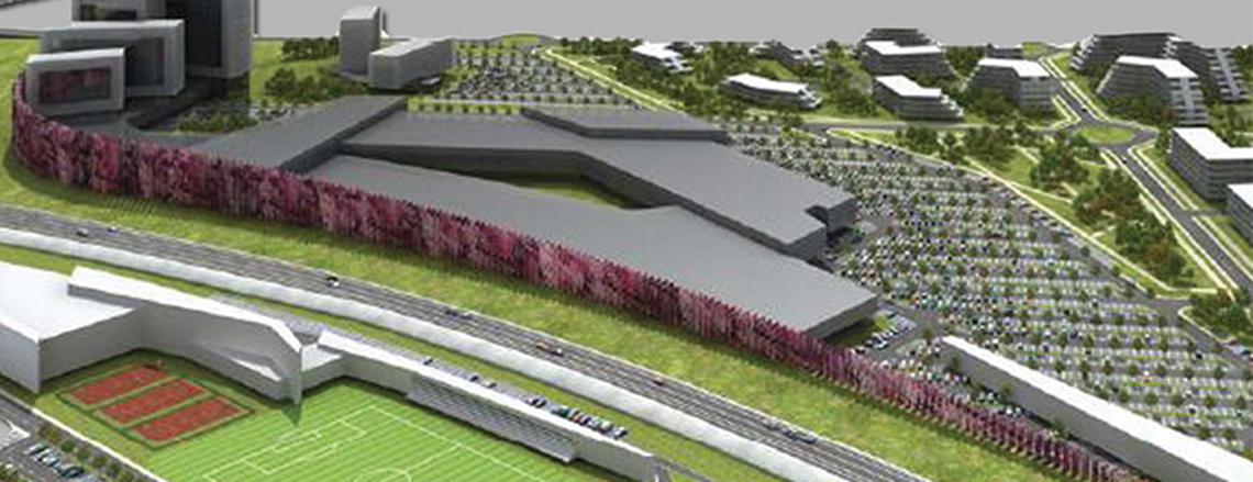 Proiect mixt pe Calea Aradului